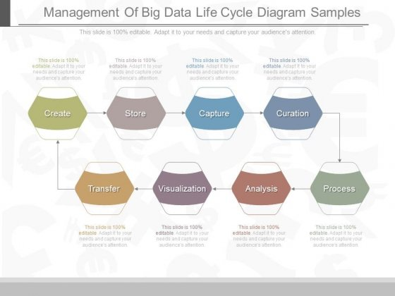 cricket life cycle diagram 98 honda accord speaker wiring management of big data samples powerpoint templates 7 1