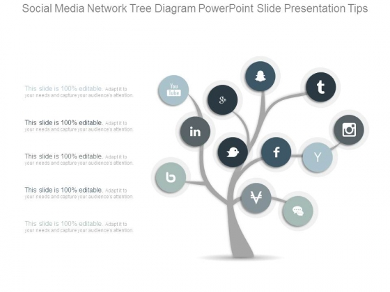 Visual Search Hierarchy Tree 1 Stages Powerpoint Slides
