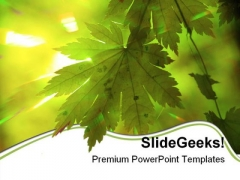 Summer PowerPoint templates, Slides and Graphics