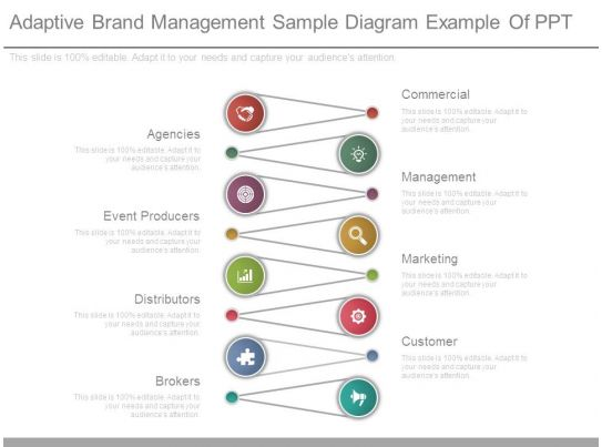 Adaptive Brand Management Sample Diagram Example Of Ppt