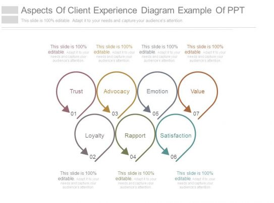 Aspects Of Client Experience Diagram Example Of Ppt