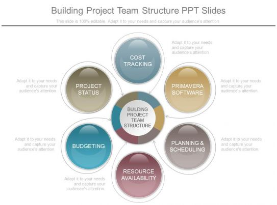 Building Project Team Structure Ppt Slides PowerPoint
