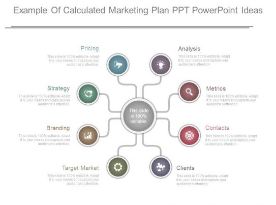 Example Of Calculated Marketing Plan Ppt Powerpoint Ideas