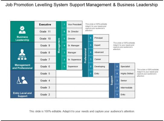 Job Promotion Levelling System Support Management And Business Leadership PowerPoint