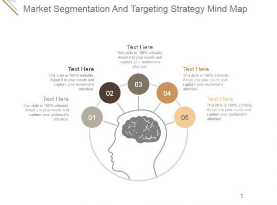 Market Segmentation And Targeting Strategy Mind Map Ppt