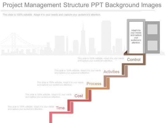 Project Management Structure Ppt Background Images