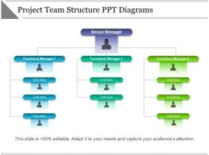 Project Team Structure Ppt Diagrams | Templates PowerPoint