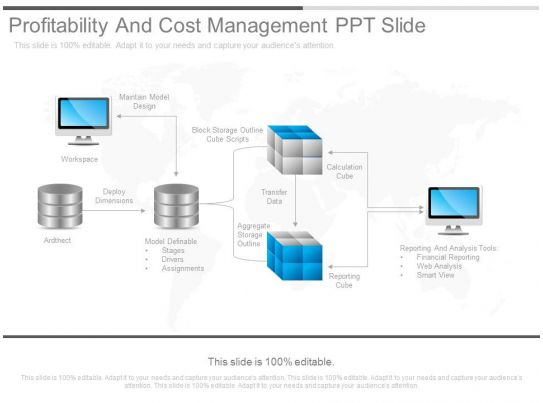 See Profitability And Cost Management Ppt Slide
