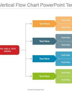 level vertical flow chart powerpoint templates slide slide also slide rh slideteam