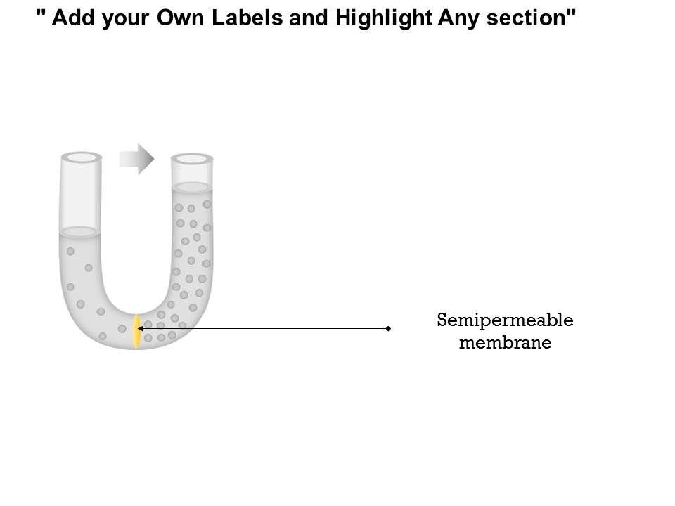 0814 Osmosis Diffusion Of Fluid Through A Semipermeable
