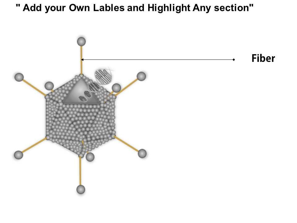 0914 Adenovirus Morphology Medical Images For PowerPoint