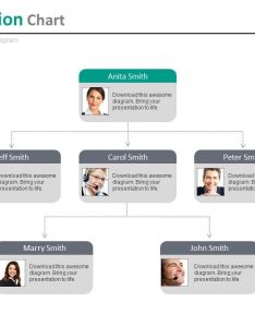 Multilevel company organizational chart for employee profile powerpoint slides slide also rh slideteam