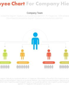 One employee chart for company hierarchy flat powerpoint design slide slide also rh slideteam
