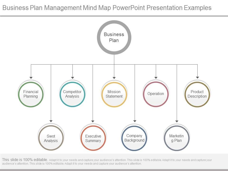 Business Plan Management Mind Map Powerpoint Presentation