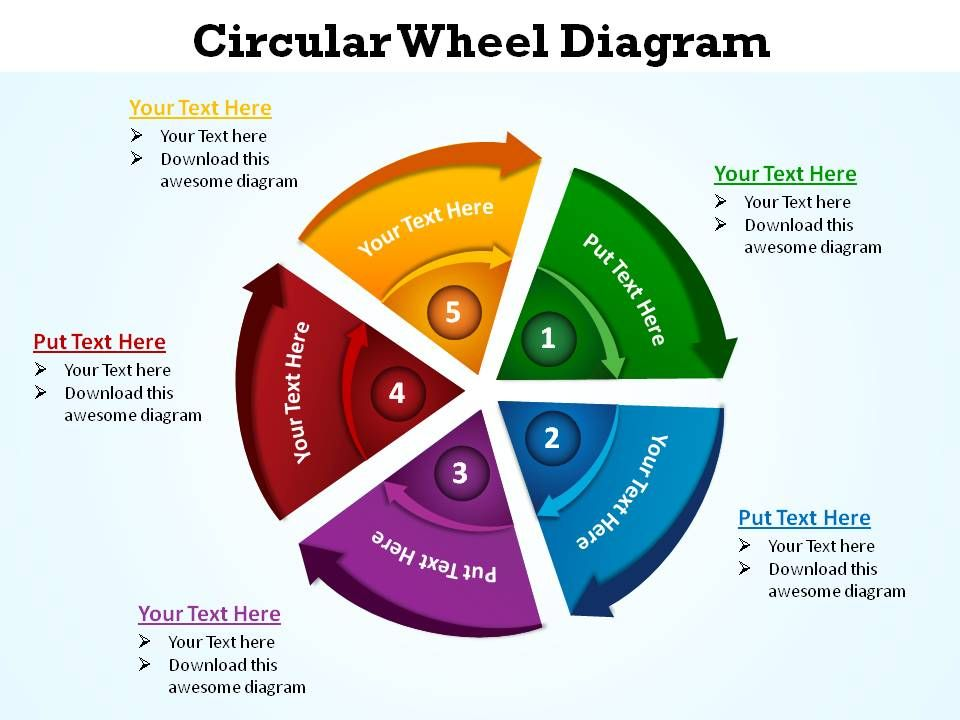 circular wheel diagram 5