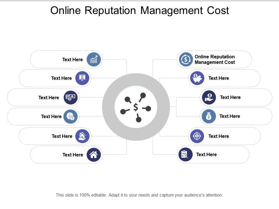Online Reputation Management Cost Ppt Powerpoint