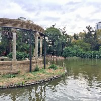 Buenos Aires Zoo: is it worth a visit?