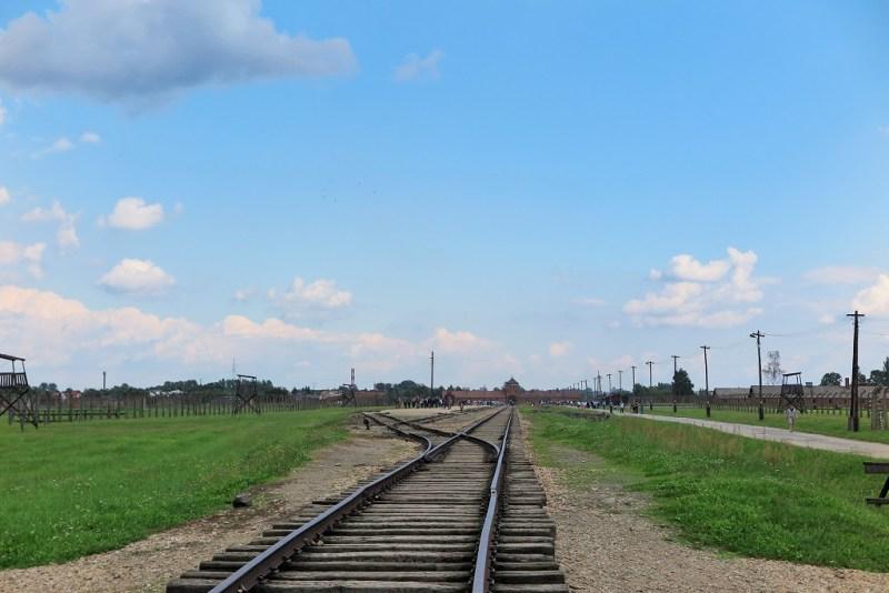 Birkenau rail 2