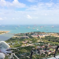 February 2015 travel re-cap: slowing down, diets, and cockroaches in Singapore