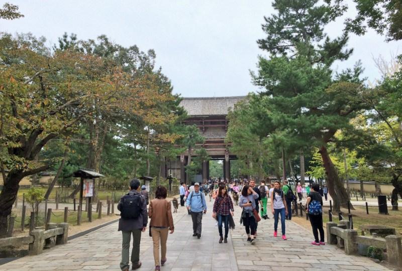Nara Todaiji Temple pathway