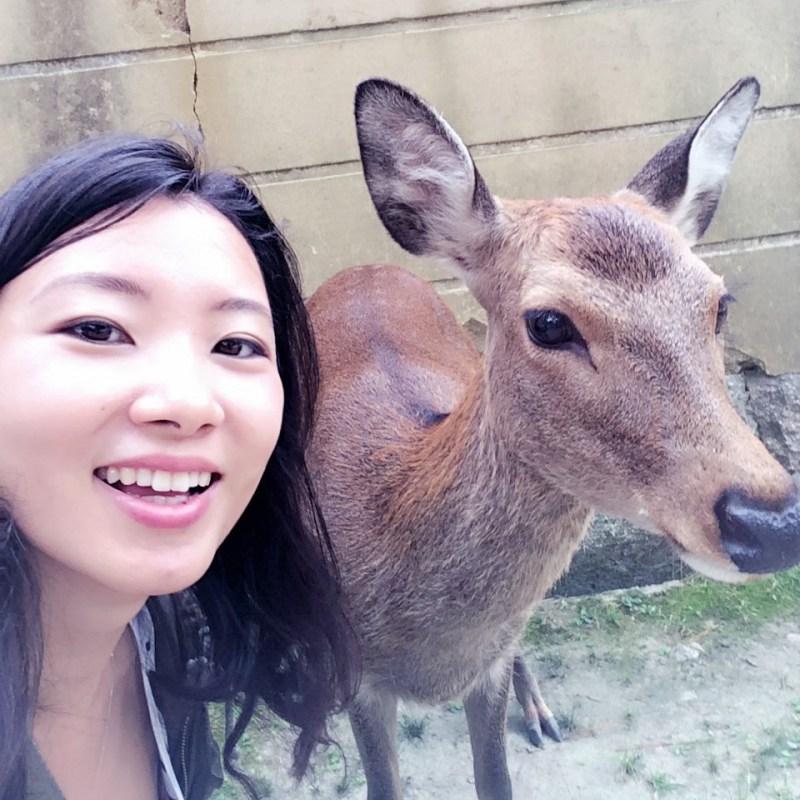 Nara deer selfie 1