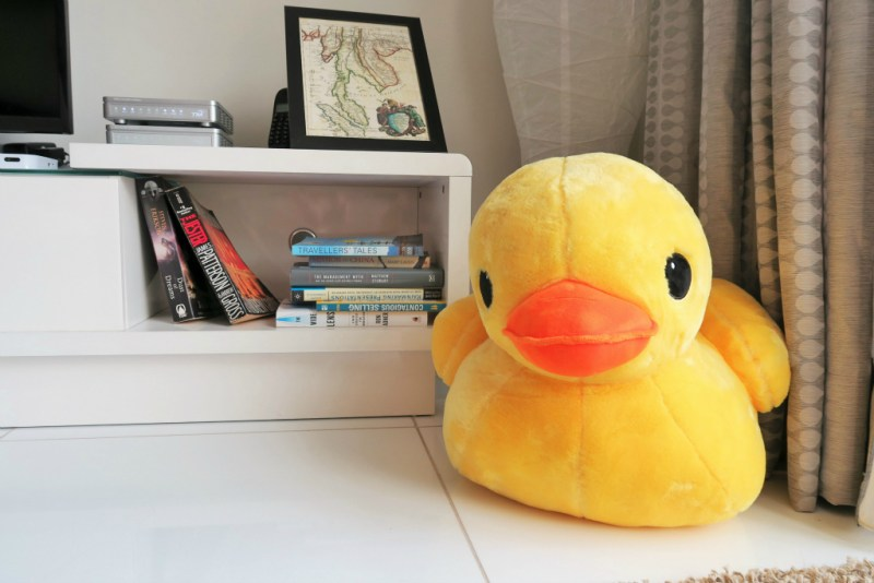 instead, enjoy this picture of Mr. Ducky in my airbnb living room!