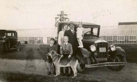 Was Opa a Nazi?