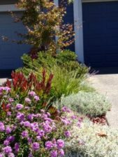 Sloat garden design front