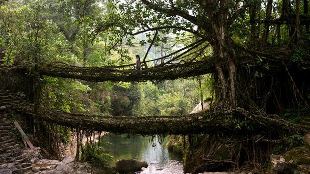 most_Indija