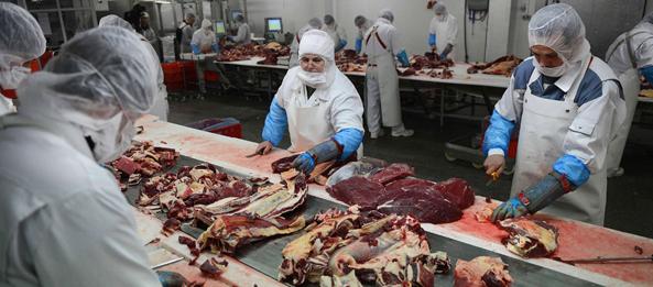 meso mesne prerađevine