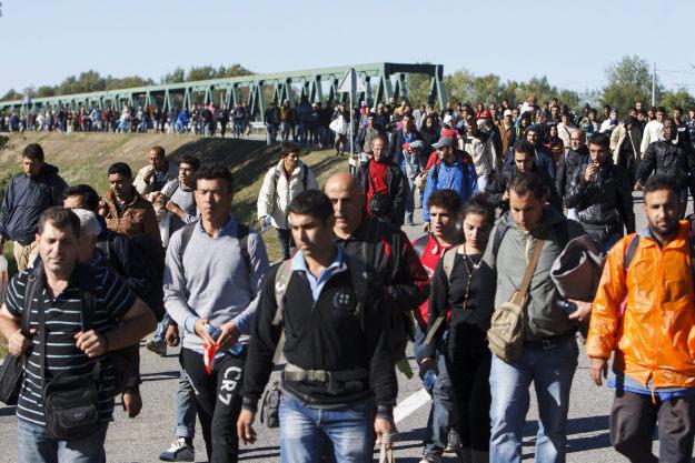 imigranti stjepan šterc
