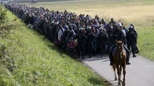 slovenija imigranti