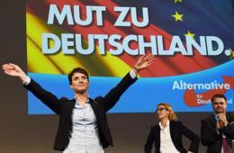 pokrajinski izbori njemačka afd