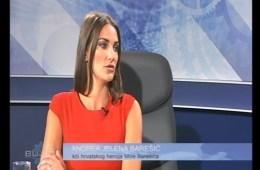 bujica miro barešić hasanbegović