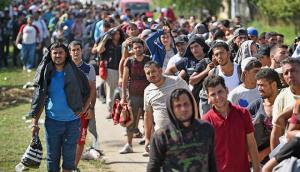 imigranti, zamjena stanovništva, generacija obnove, frano čirko, plenković, kvota