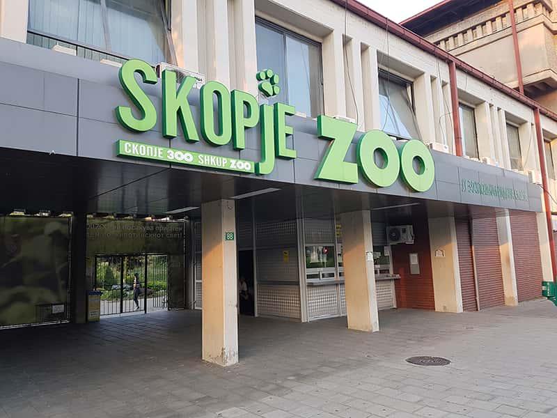 Што им порачаа од зоолошката на нашите инфлуенсерки? Не, не може да се сликате легнати до тигарот во тигреста купаќа!