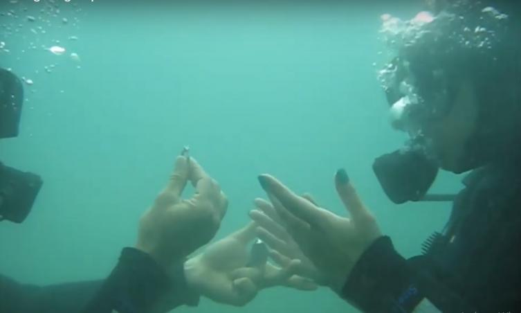 ЗАПРОСУВАЊЕ на дното на Охридско Езеро