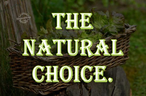 Organic Food Slogans  Page 2