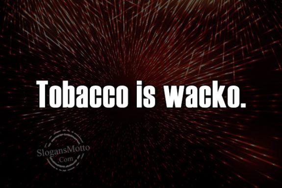 Anti Tobacco Slogans