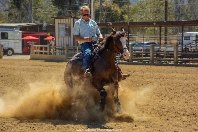 Reining Horse KT (1024x683)