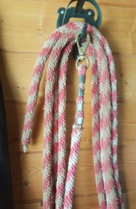 Home made lunge rope (668x1024)