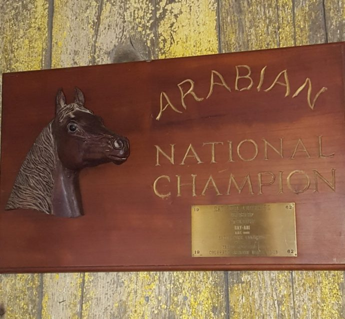 National Championship Plaque Bay Abi (1280x1183)