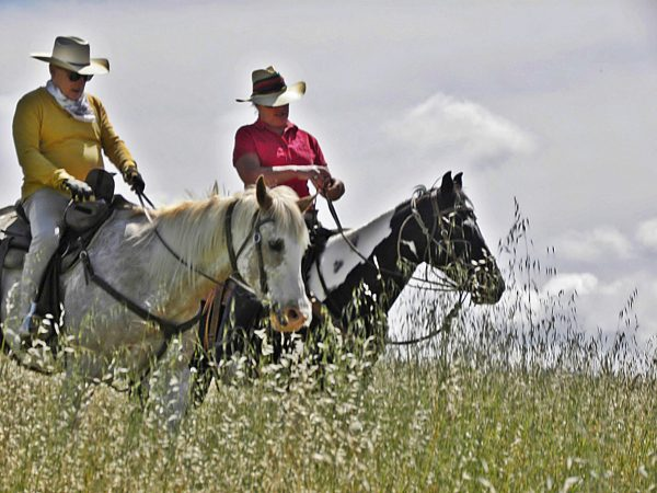 Are You and Your Horse Ready to Ride the Trails?   SLO Horse News