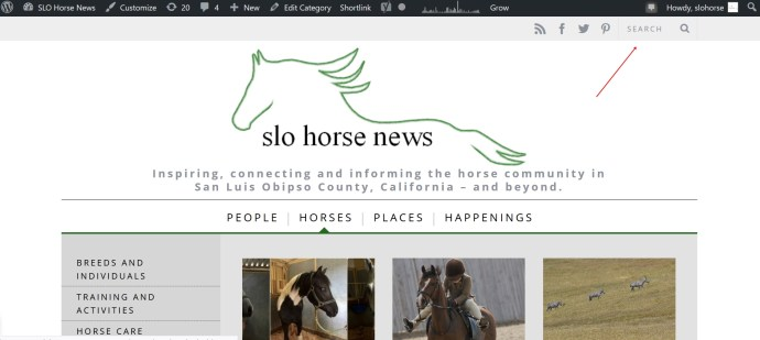 5 Tips for Surviving Being Horseless in SLO County | SLO Horse News
