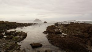Morro Strand State Beach: Riding the SLO County Trails