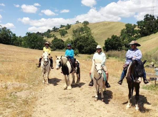 Learning About and Loving Long Distance Riding | SLO Horse News