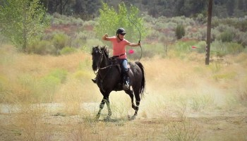 Horse Archery : Horses, Bows, Arrows and Targets