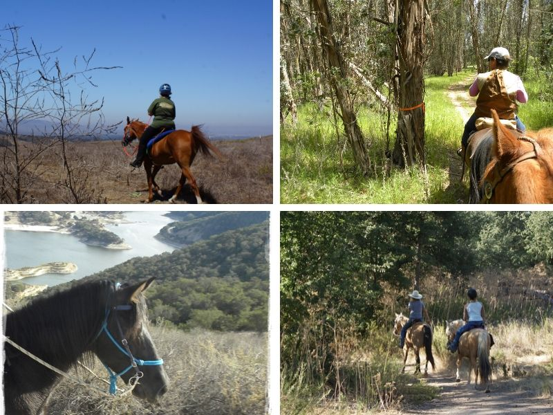 Now Where Can I Ride My Horse in SLO County?