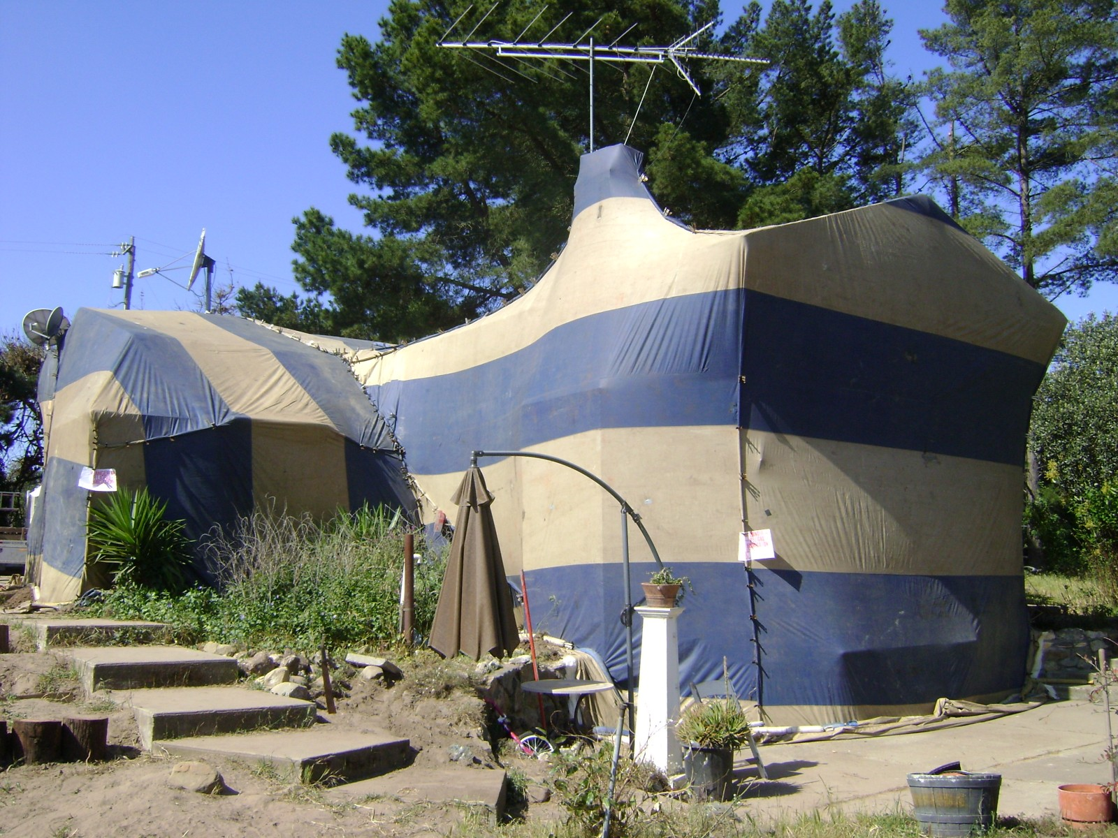 SLO Pest and Termite  Fumigation aka Tenting 5 Year