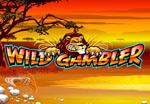 slot wild gambler online